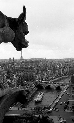 Robert Doisneau - notre dame gargouille - Paris found bath boutique store shop telgraph stella
