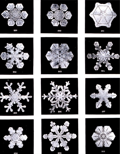 snowflakes stella telegraph top 50 found bath boutique designer shop vogue top 100 glamour magazine